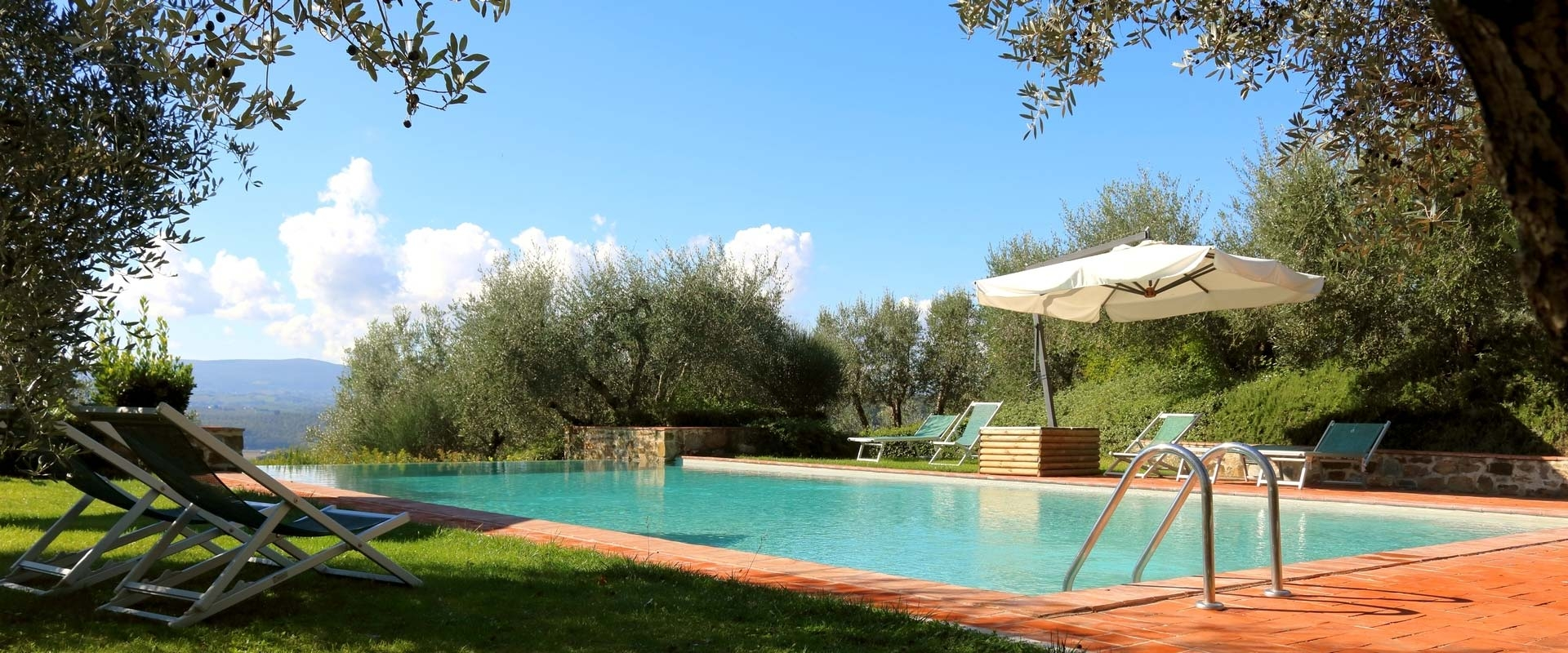Suggestive swimming pool among the olive trees